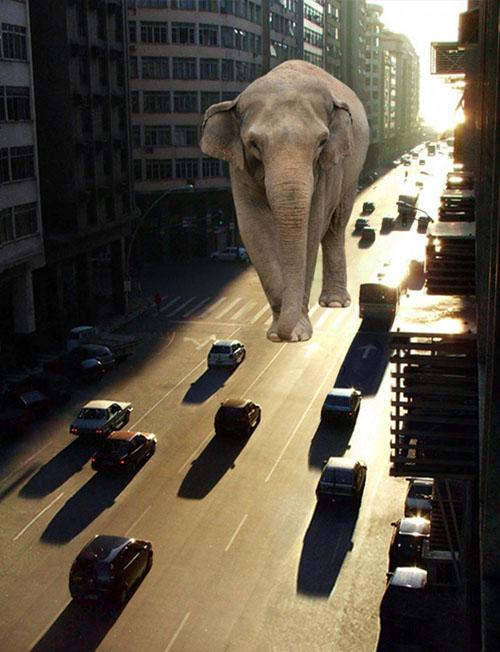 Lighting a Giant Elephant Photoshop tutorial
